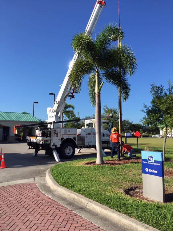 Exterior Sign Installation services in Samoset FL for your lighting projects
