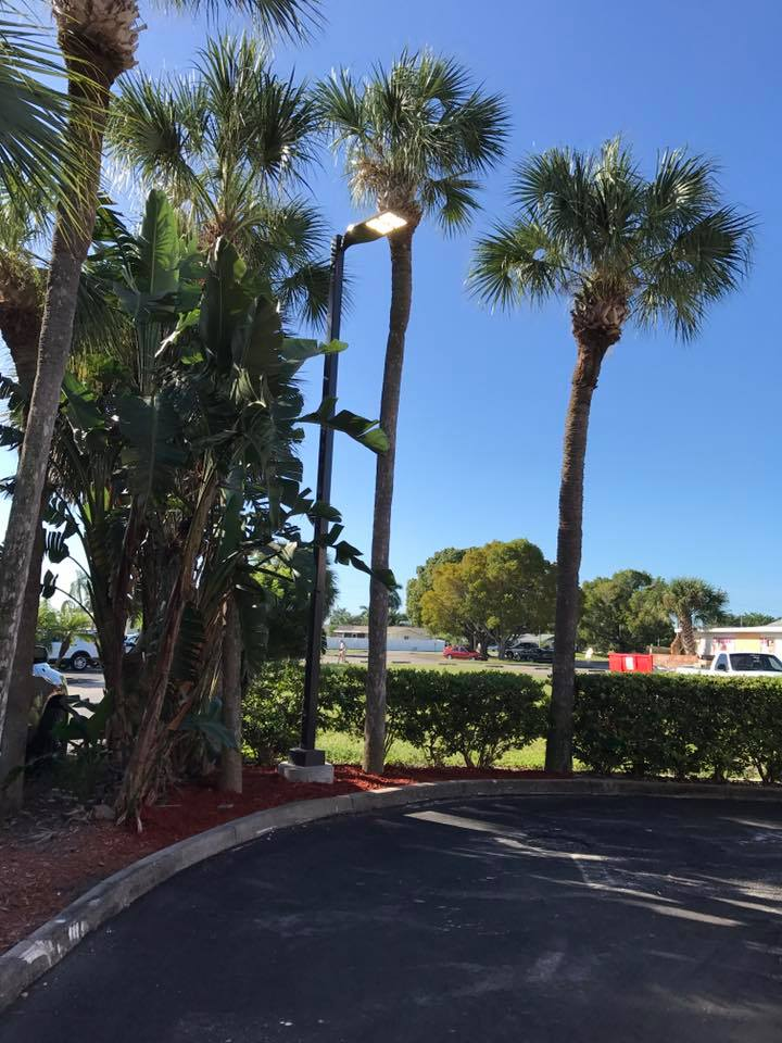In Sanibel FL customers trust their Commercial Construction or Remodeling Project for Commercial Parking Lot Lighting Fixture to TCL Electrical and Lighting Services